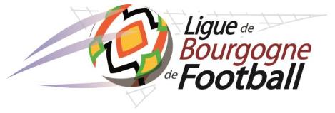 Logo ligue bourgogne